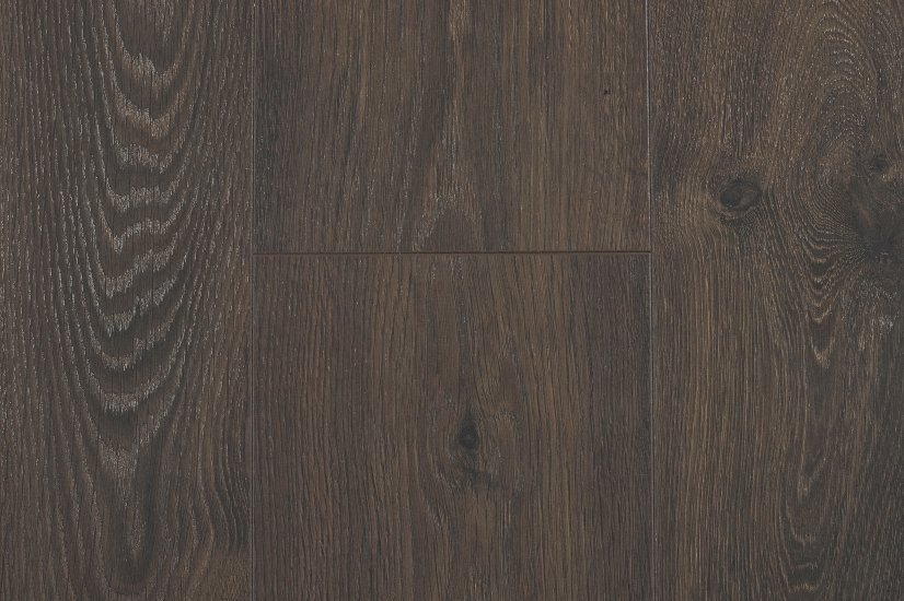 Leysin Oak 2025 Chrome