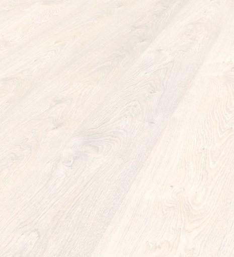 Manitoba Oak 8373