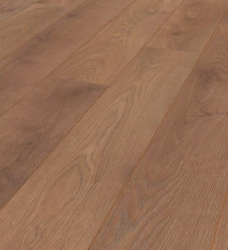 Arizona Oak